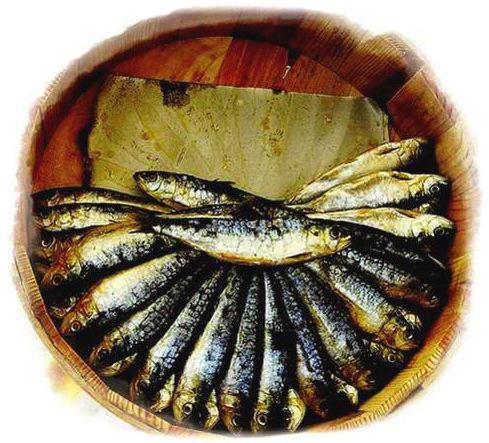A sardina casco