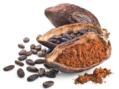 A cacao