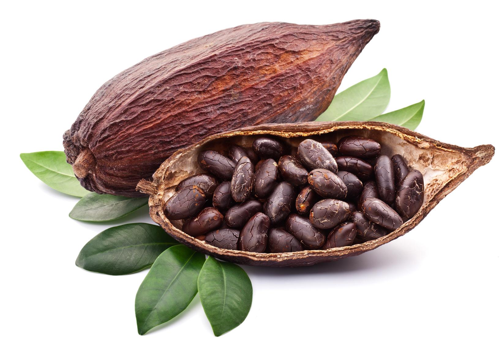 A cacao 1