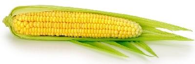 A maiz
