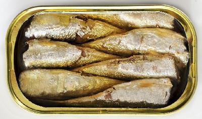 A sardinas conserva