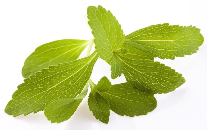 A stevia hojas RED